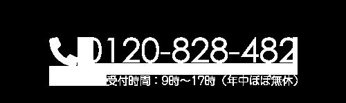 0120-828-482